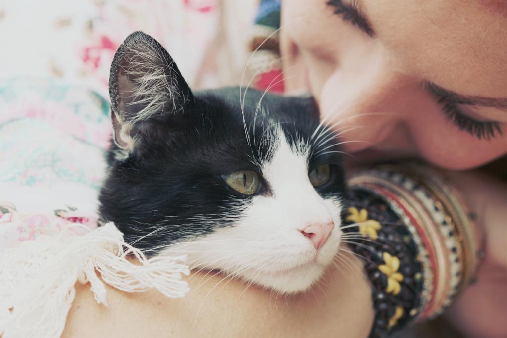 girl hugging cat wearing bracelets