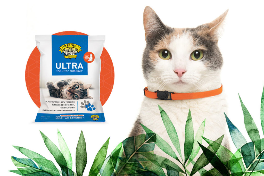 Orange collars in Dr. Elsey's cat litter promo