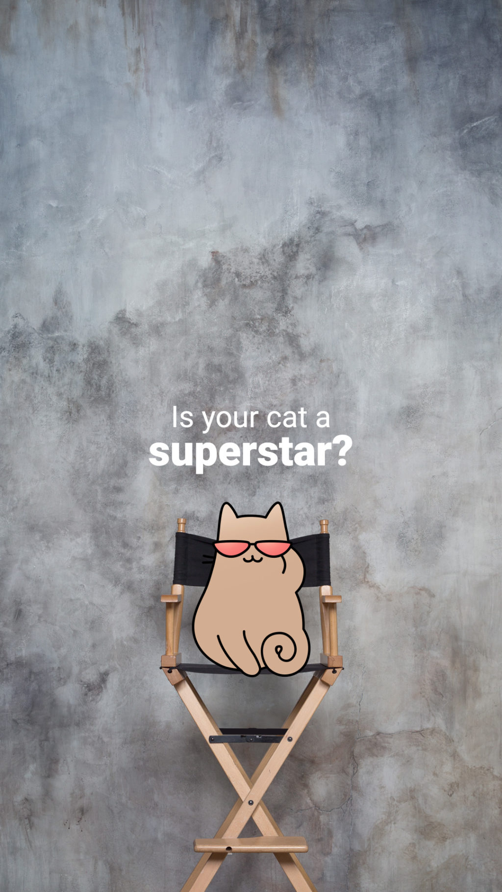 Is your cat a superstar? (Cartoon cat wearing sunglasses and sitting in a director's chair.)